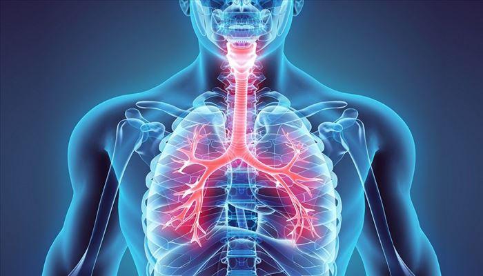 مهمترین علل بیماری های تنفسی و ریه