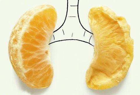 سلامت ریه ها را با 7 روش موثر تضمین کنید