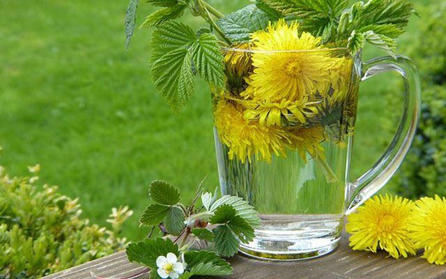 پاکسازی کلیه ها با نوشیدنی های طبیعی